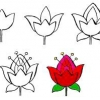 Як намалювати квітку?