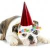 Як оригінально привітати з днем народження