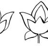 Як малювати квіти