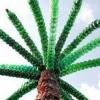 Як зробити пальму з пластикових пляшок?