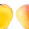 Як вибрати манго