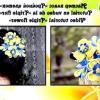Канзаши складні квіти майстер клас