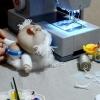 Ляльки з колготок майстер клас
